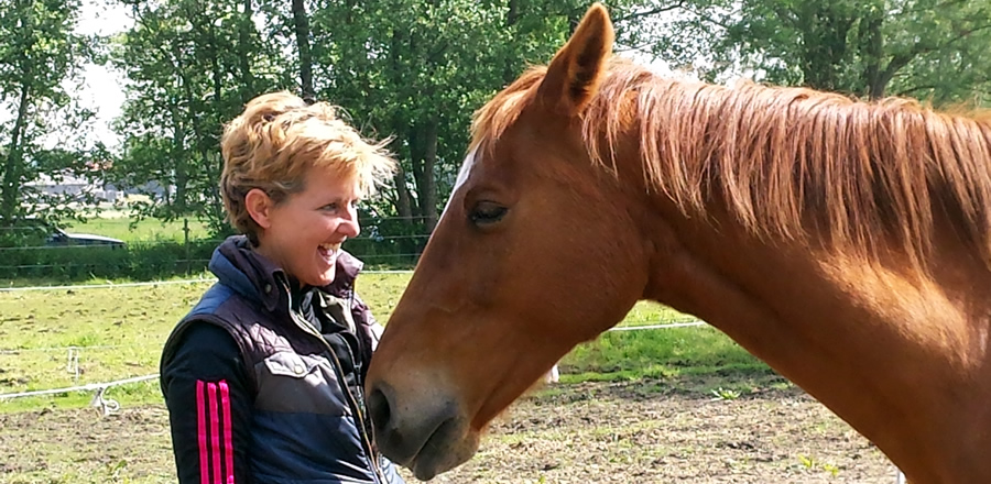 individuele paardencoachin
